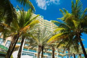 shutterstock_175699574 Florida_1